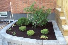 Japaninspirerade växter - Vy över vänstra sidan av entrén